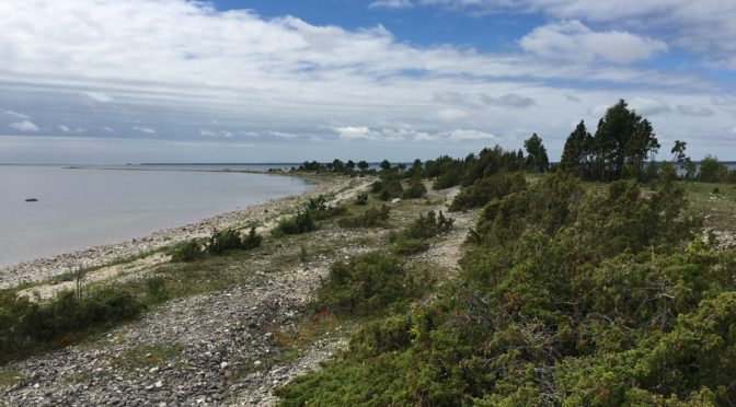 Wieder auf dem Festland Estonias…