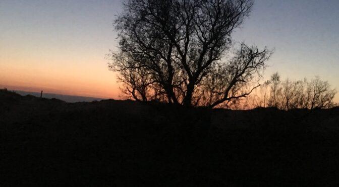 Der Winter auf Peloponnes nähert sich dem Ende…